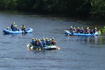 three rafting groups