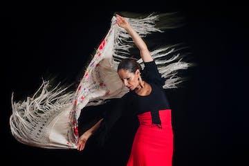 bailaora de flamenco con un mantón
