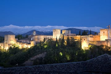 a castle like building with Alhambra in the background