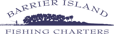 Barrier Island Fishing Charters