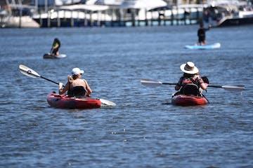 Capital SUP kayakers on Back Creek