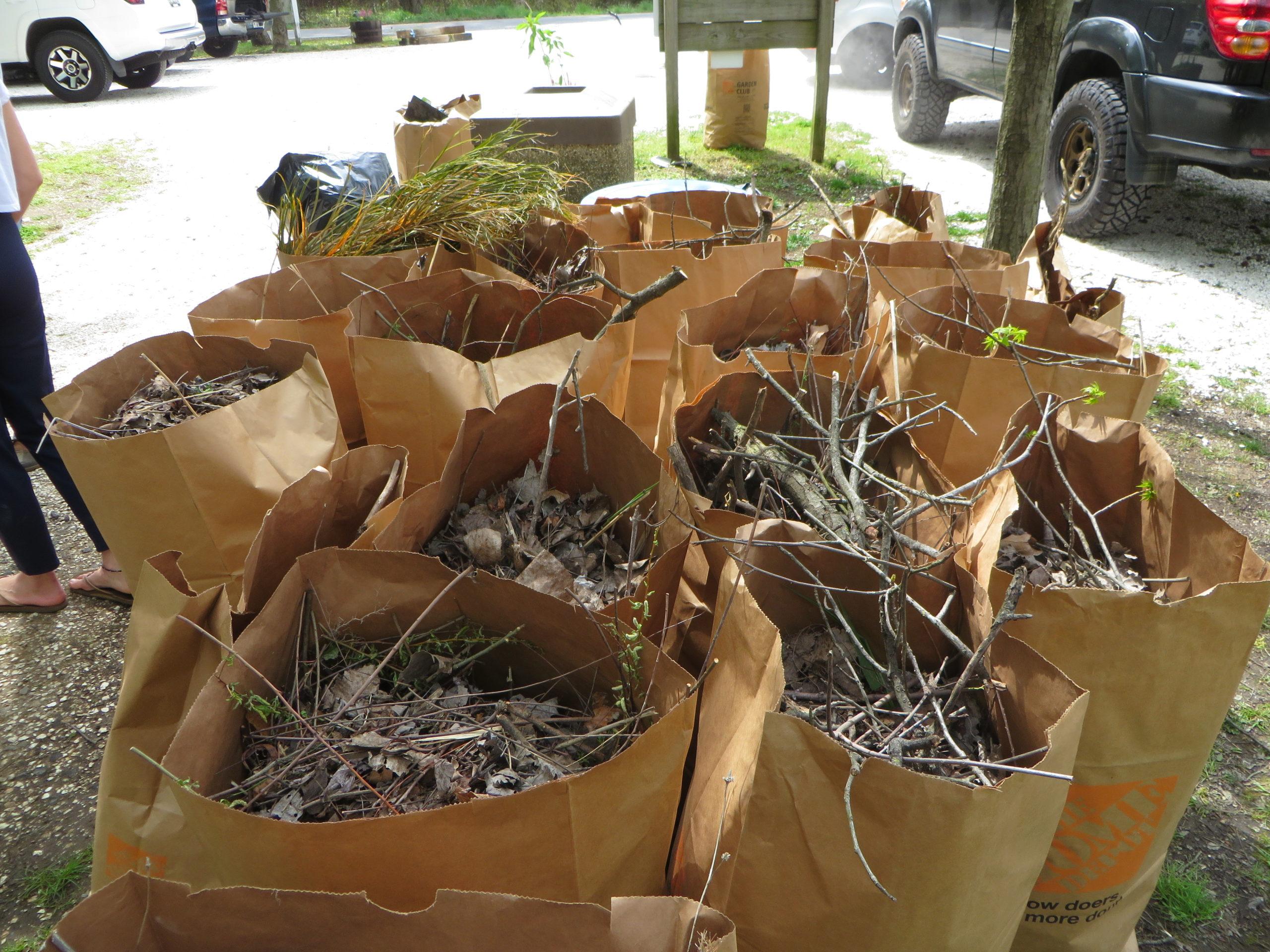 Bags of Yard Waste