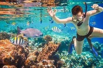 man snorkeling in clear water