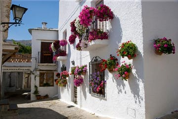 flores en las calles de Granada