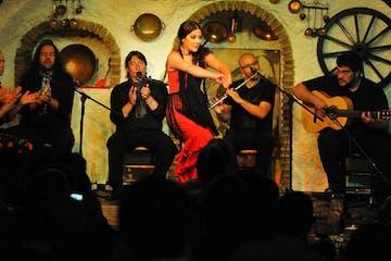 espéctacula de flamenco en Granada