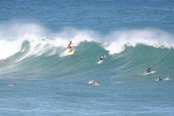 people surfing waves