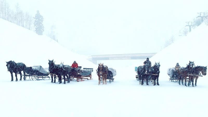 a group of people riding on the back of a horse in the snow
