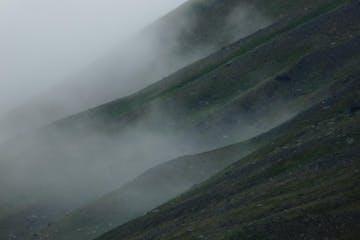 a close up of a hillside