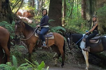 a couple of people that are sitting on a horse in a forest