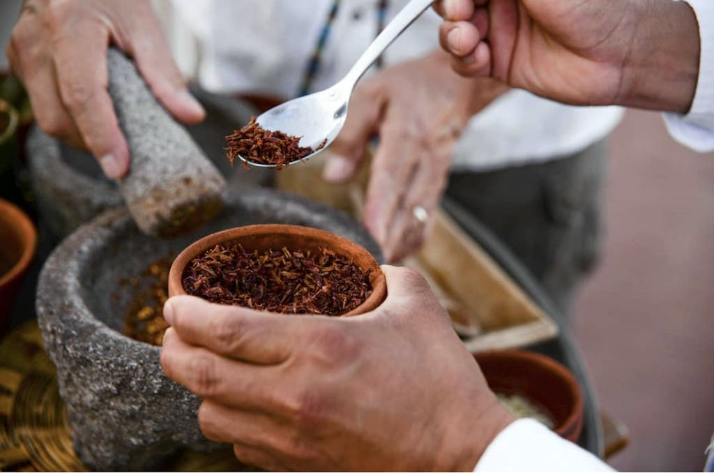 Eating Chapulines (Grasshoppers) in Oaxaca