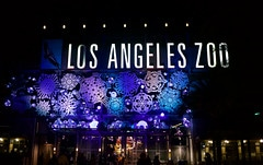 la zoo lights photo