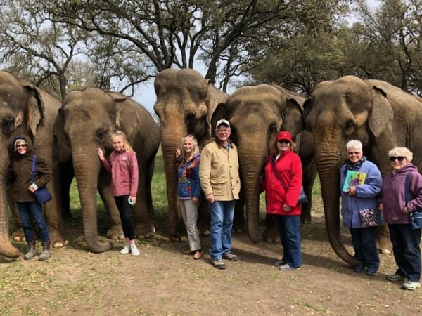 a group of people standing in front of an elephant