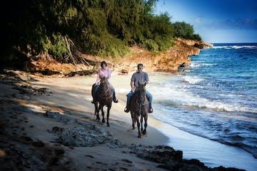 a person riding a horse on a beach