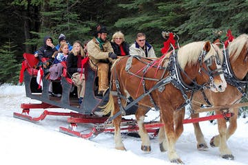 a horse pulling a carriage with people in the snow