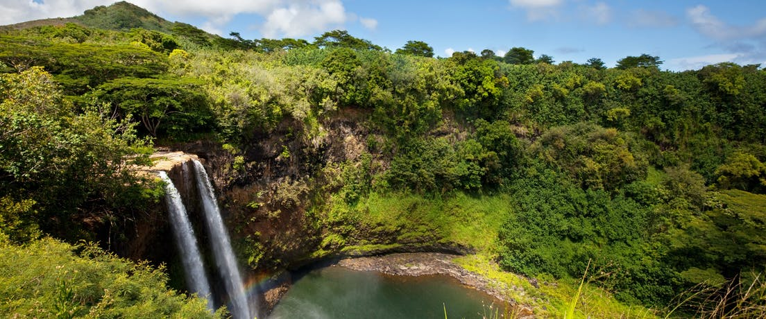 Get on ours in Kauai where we take you on a leisurely cruise down the Wailua River to the botanical beauty of the Fern Grotto.