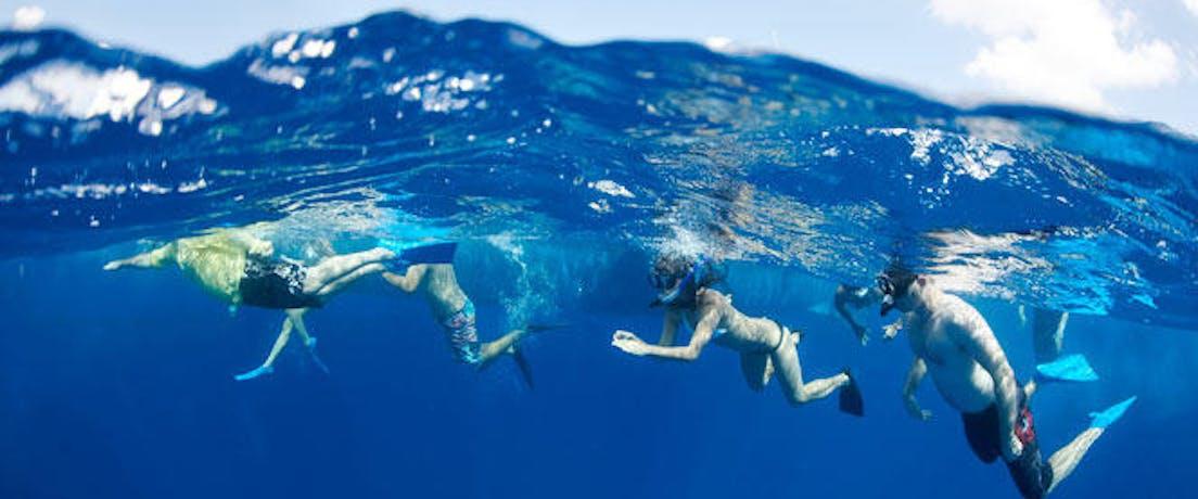 Group of snorkelers in Kona