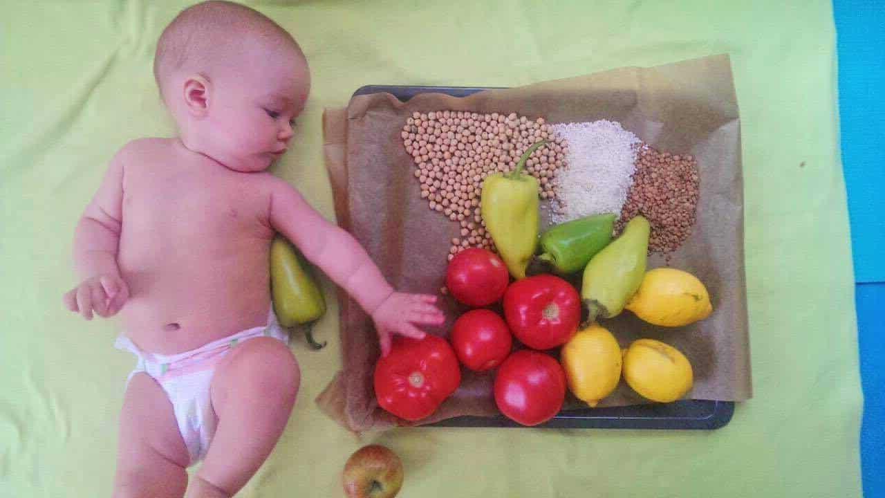 world vegan day celebration