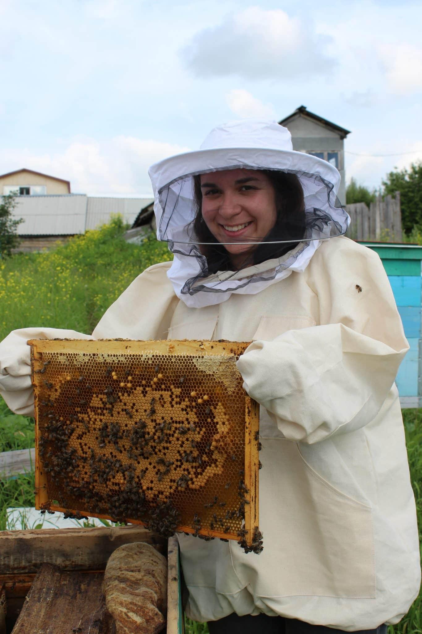Russian honey farm