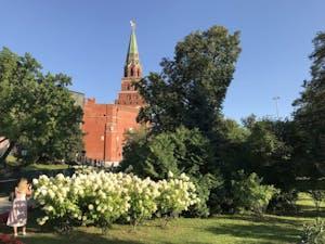 a clock tower in a garden