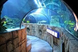 SeaLife Park Carlsbad
