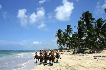 a group of people riding a horse on a sandy beach