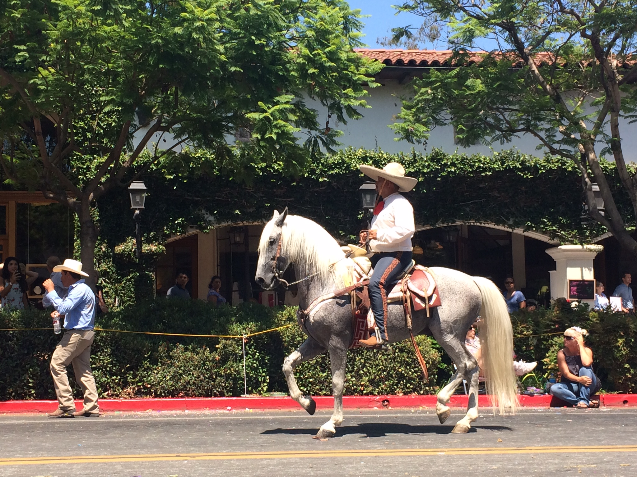 Ranchero horseback rider on State Street in the largest horse parade in North America during La Fiesta