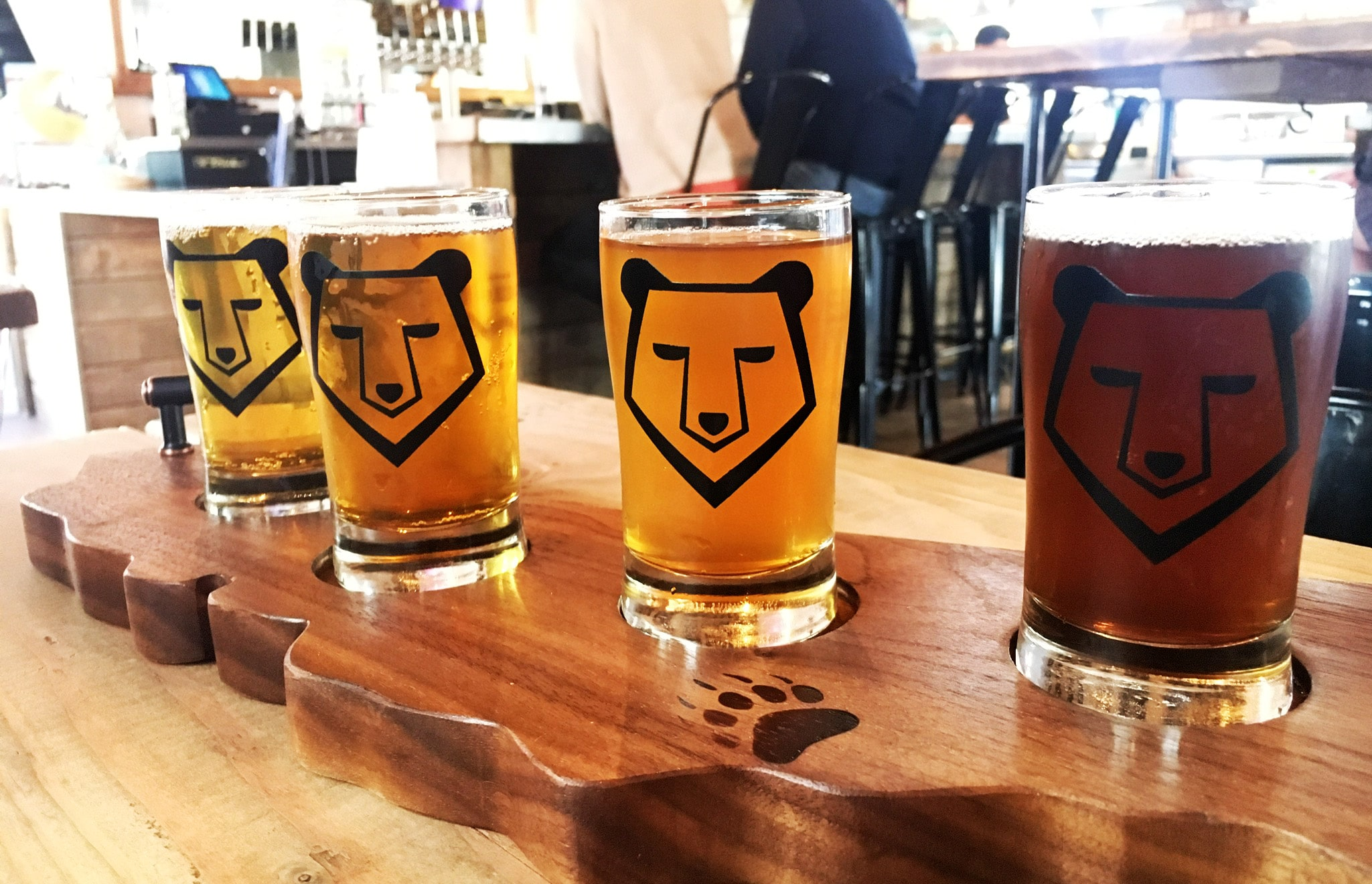 Beer sampler from Brass Bear Brewing and Bistro