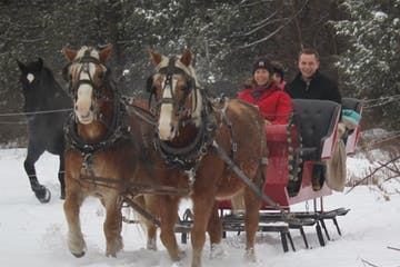 ride in a sleigh
