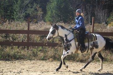 a man riding a horse next to a fence