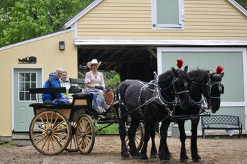 a man riding a horse drawn carriage in front of a house