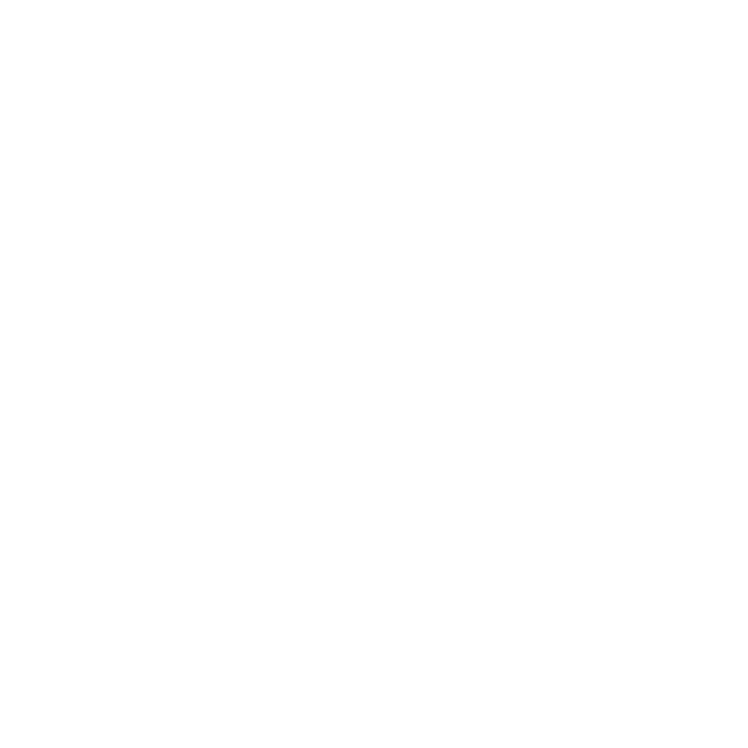 fitz tours logo