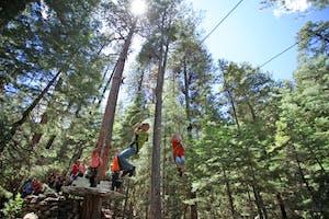 kid ziplining in forest