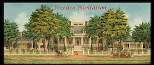 Tezcuco Plantation