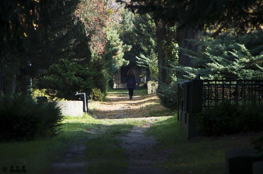 Friedhof Herbst Frau