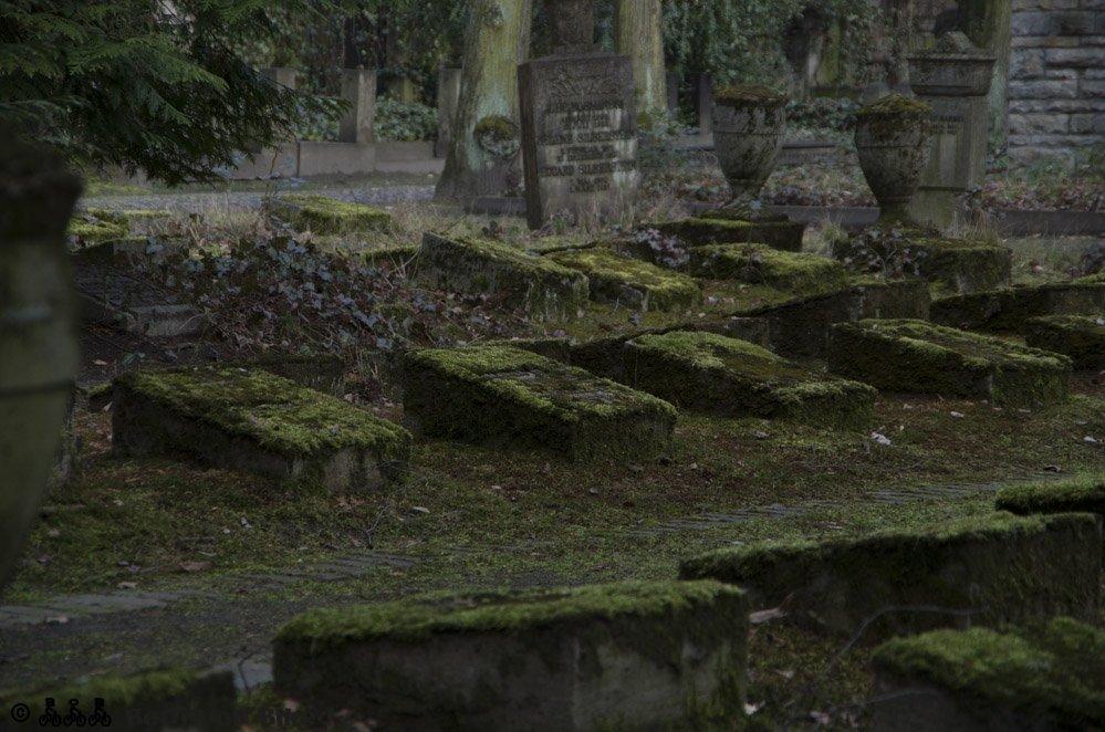 Gräberfeld mit Urnengräbern - eine weitere Besonderheit des Friedhofs.
