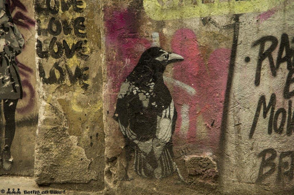 street-art-berlin-haus-schwarzenberg-2015-9150