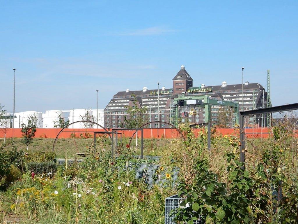 Blick vom ZKU (Zentrum für Kunst und Urbanistik) zum Behala-Speicher am Westhafen.