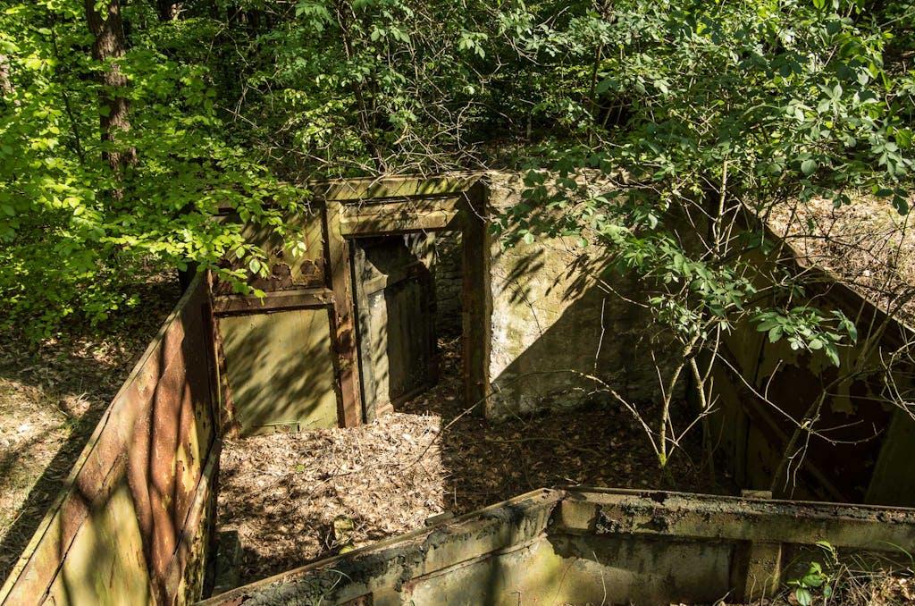 Bunkerreste im Wald bei Lobetal