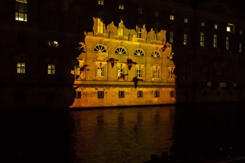Projektion vom BUND Deutschland bei Festival of Lights 2016 am Alten Marstall