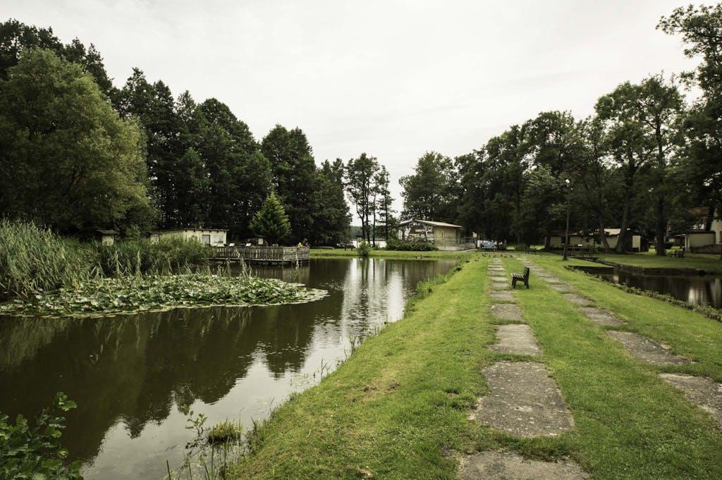 Fahrradtour durch Brandenburg: Fischteich mit Seerosen,