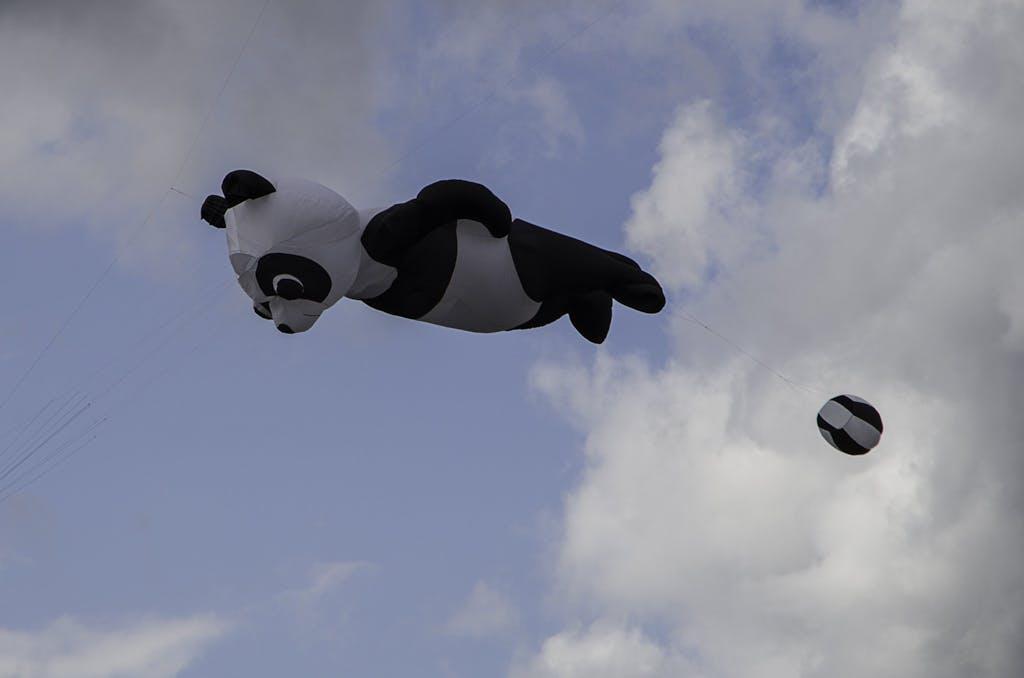 Pandas gehen immer, besonders wenn sie fliegen