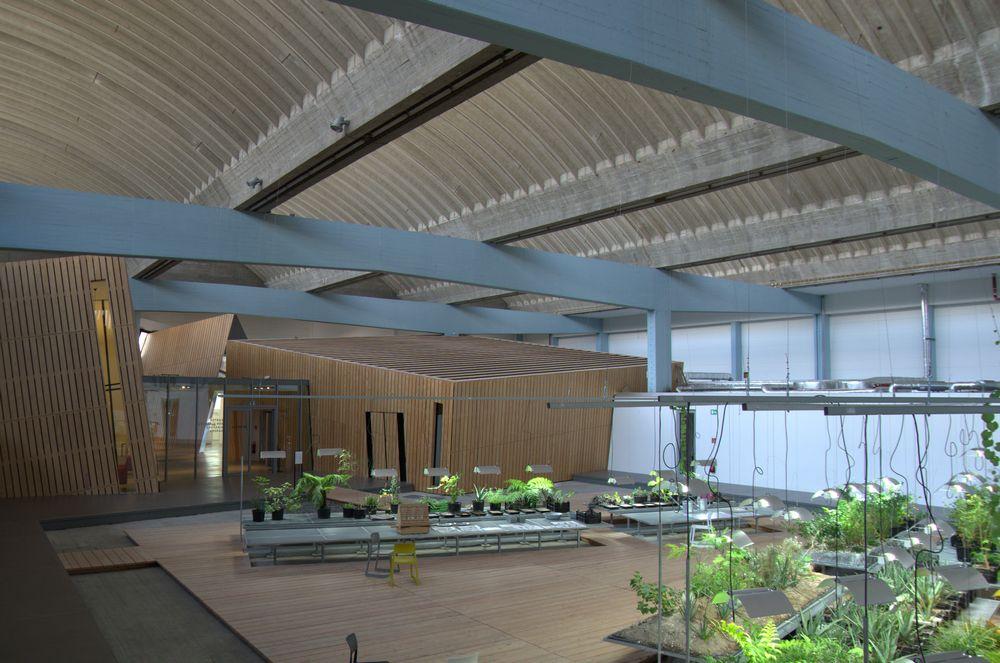 Garten der Diaspora in der Akademie des Jüdischen Museums.