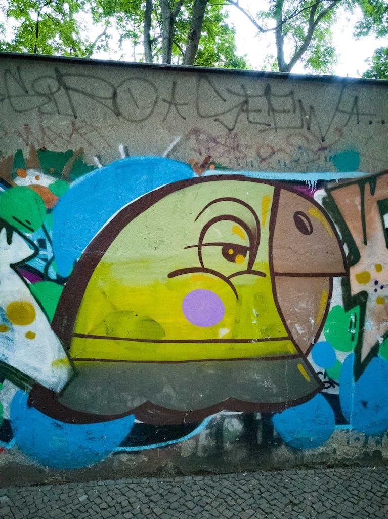 Graffiti of a parrott