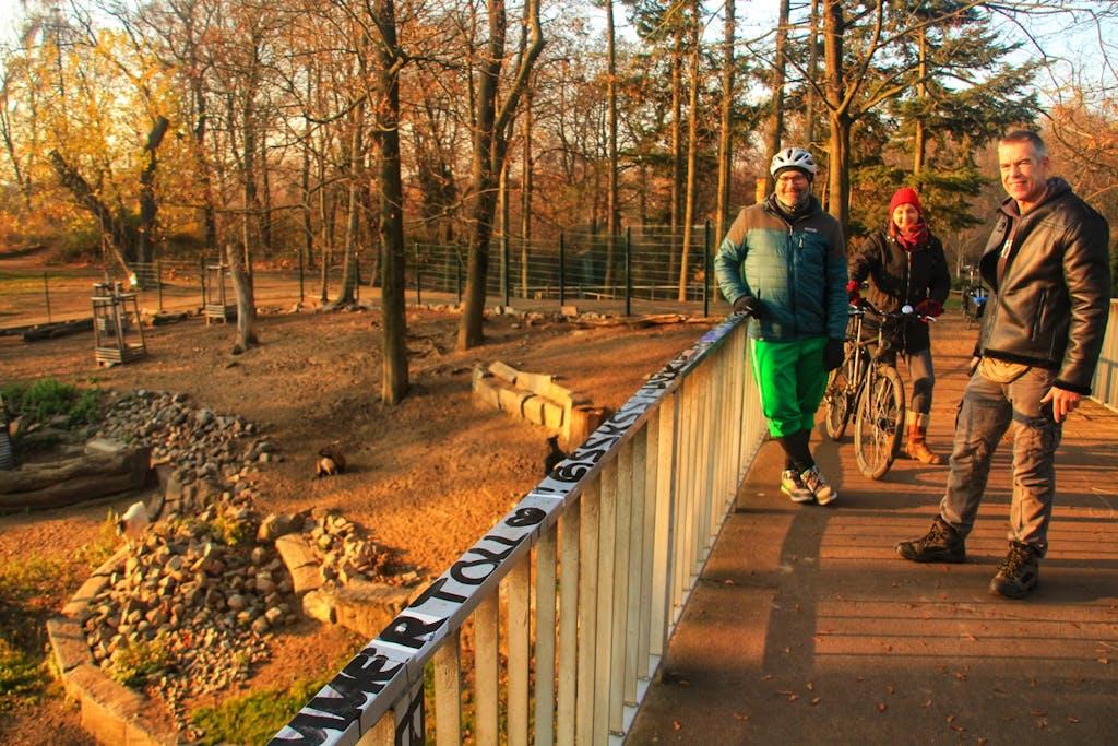 Wir statten auch den Ziegen im Bürgerpark Pankow einen Besuch ab und erfahren viel über die Geschichte des Parks.