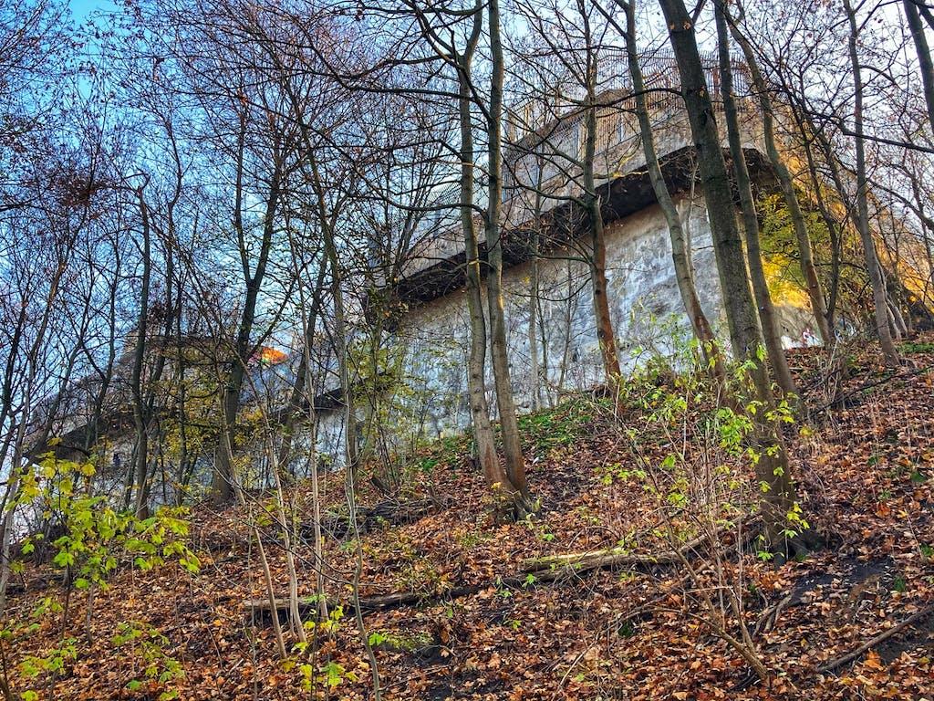 An der Bunkerwand am Humboldthain wird heute geklettert.