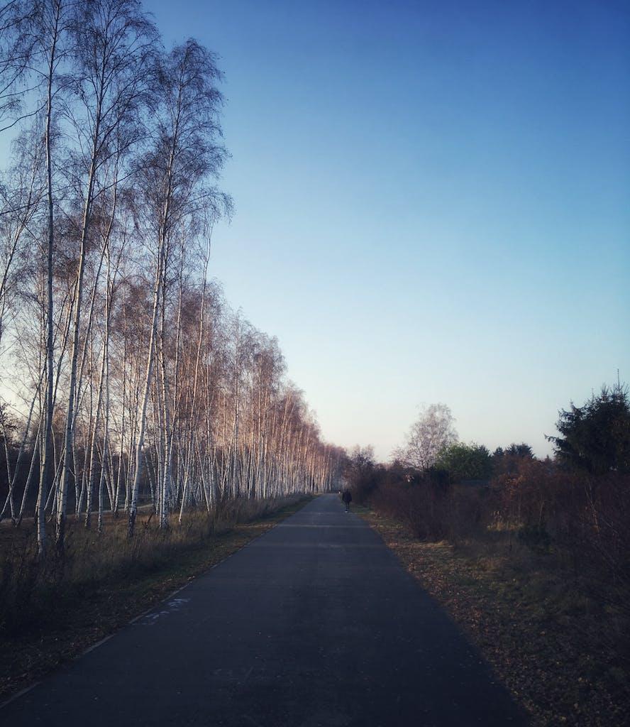 Schöne Strecke am Mauerweg in Schönholz