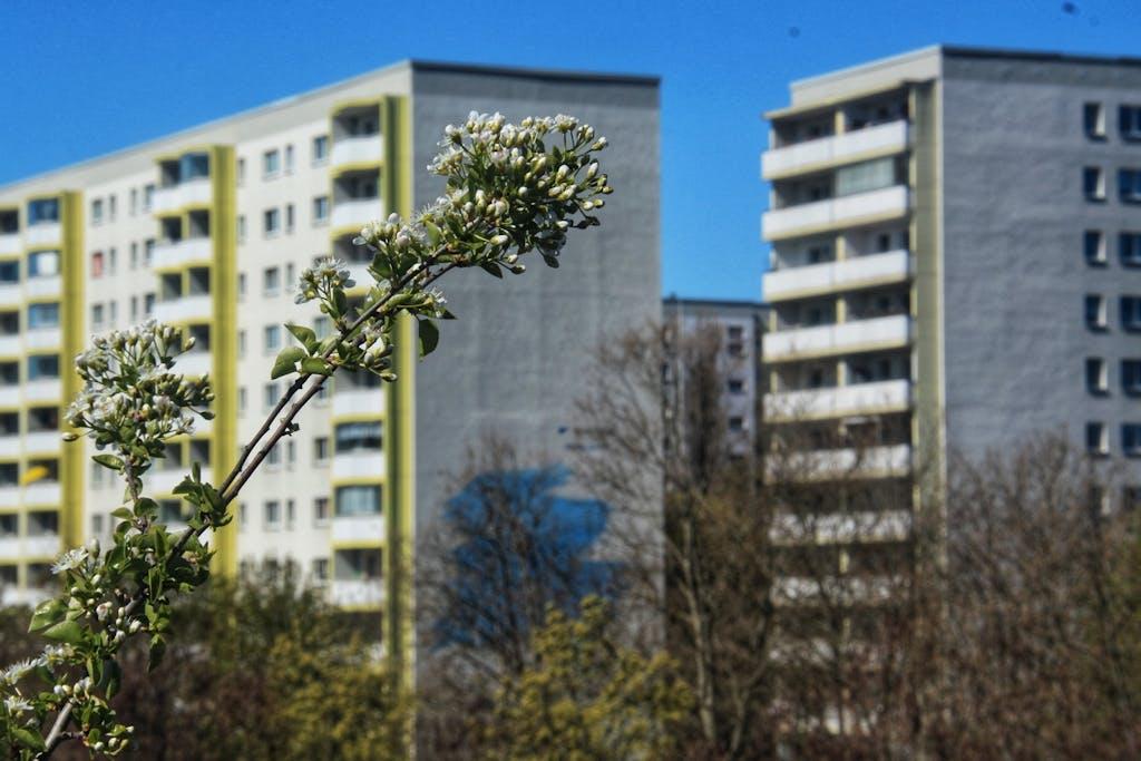 Hochhäuser im Frühling im Ostsee-Viertel