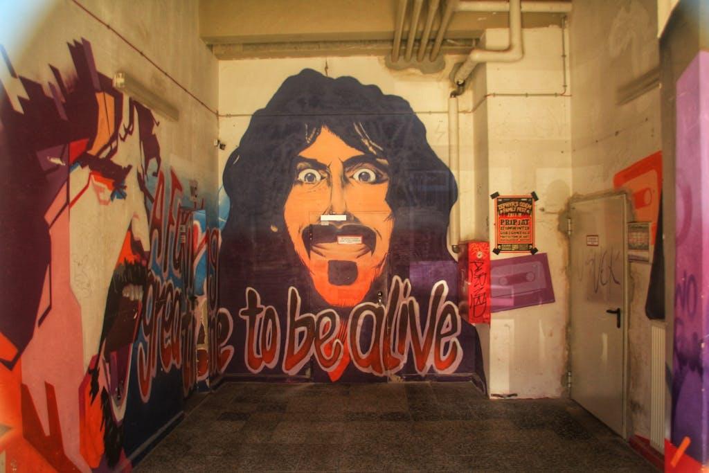 Frank-Zappa-Graffiti Orwo-Haus