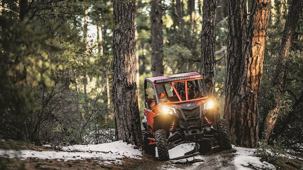 a person driving a forest in the snow