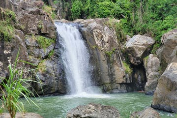Puerto Rico El Yunque Rainforest Hiking to Waterfall and Cliff Jumping Adventure